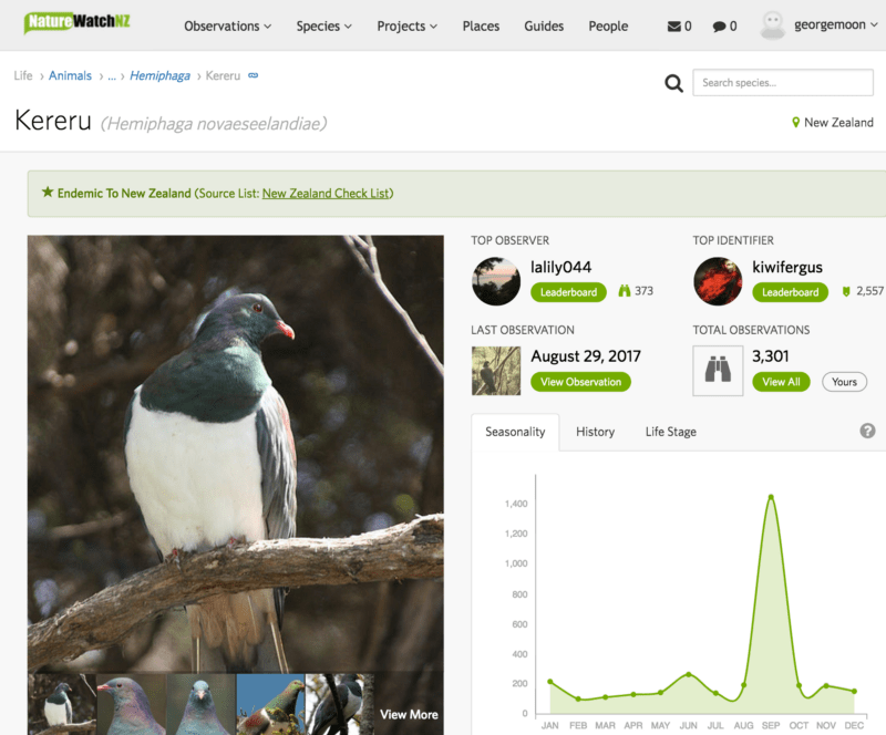 Screenshot of a page from NatureWatch NZ (now iNaturalist NZ)